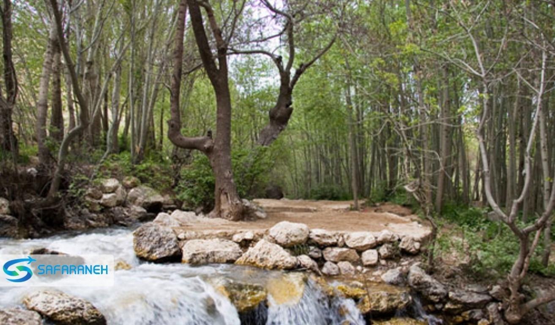 پارک جنگلی پروز شهرکرد