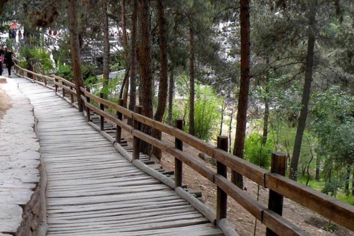 پارک جنگلی های تهران