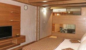 اتاق دو تخته چشم انداز الوند