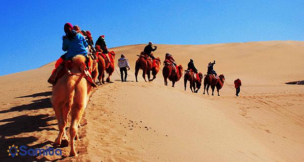 شتر سواری در جاده ی ابریشم
